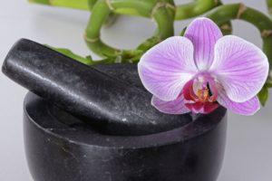 mortier et orchidée